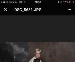 Доберман ищет заботливых хозяев - фото 1 к объявлению
