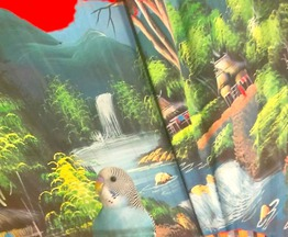 Продается попугай - фото 1 к объявлению