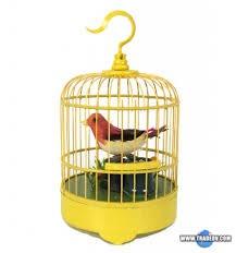 фото: Птица в клетке