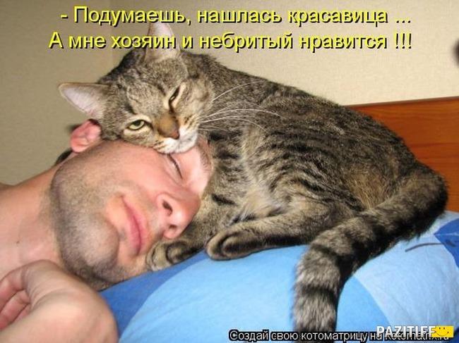 фото 1: Котоматрица: С кем спать?