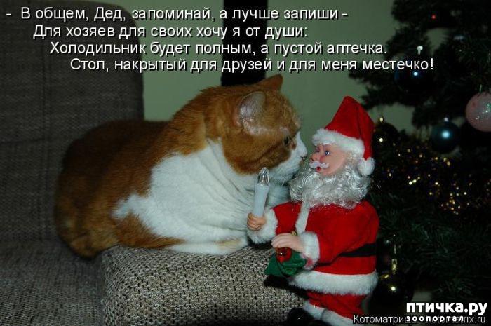 https://www.ptichka.ru/data/cache/2017dec/04/33/40265_66441.jpg