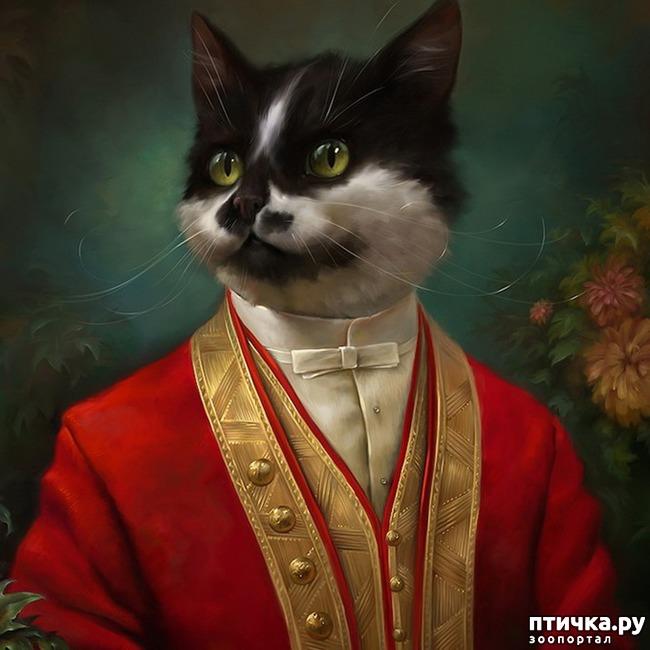 фото 1: Коты Эрмитажа Открытки Эльдара Закирова