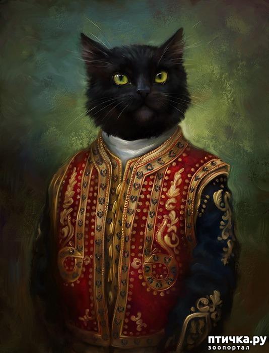 фото 2: Коты Эрмитажа Открытки Эльдара Закирова