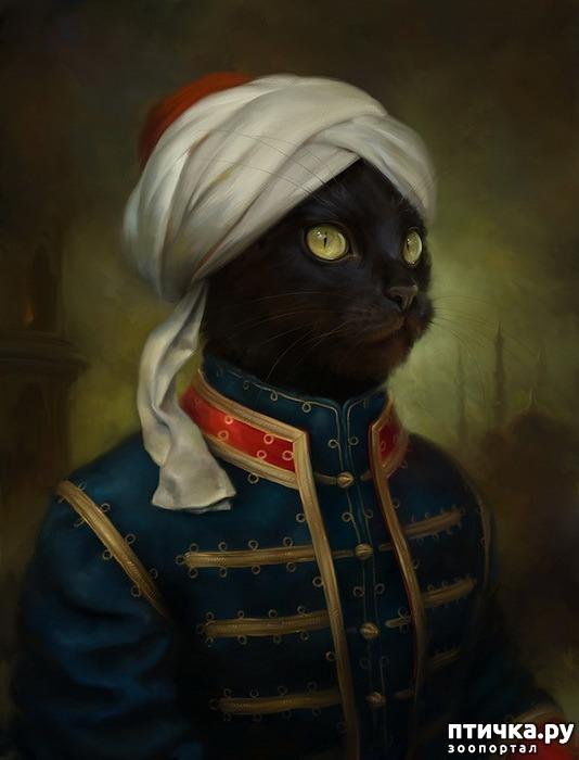 фото 4: Коты Эрмитажа Открытки Эльдара Закирова
