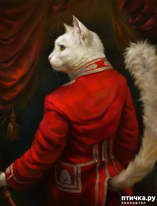 фото 6: Коты Эрмитажа Открытки Эльдара Закирова
