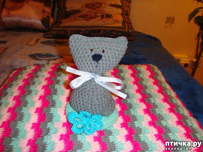 фото 5: Мои вязалочки для моей любимки.