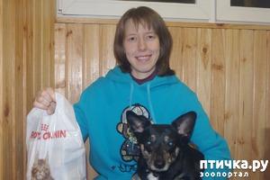 фото: Выигрыш подарка для собаки от магазина Animals в Черную Пятницу