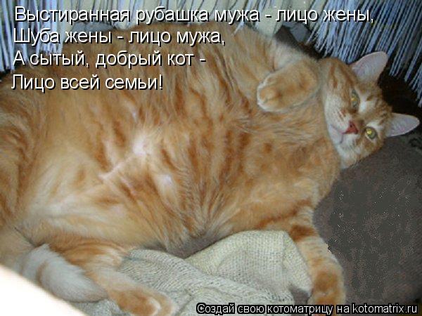фото 8: Кто лучше - муж или кот??? (юмор)