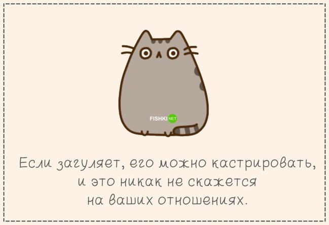 фото 10: Кто лучше - муж или кот??? (юмор)