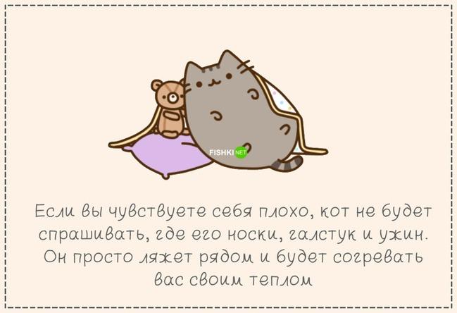 фото 11: Кто лучше - муж или кот??? (юмор)