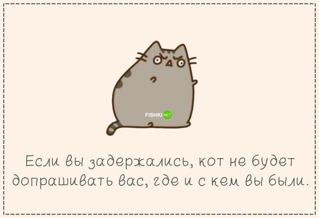 фото 13: Кто лучше - муж или кот??? (юмор)