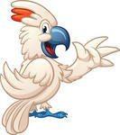 фото: Наш домашний питомец по кличке Котя - любимый попугай какаду