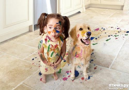 фото 1: Дети и собаки (фотки)