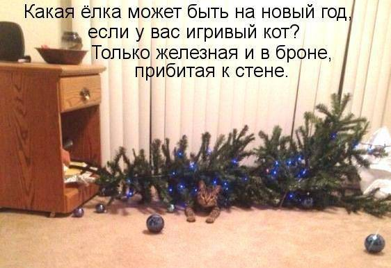 "фото 4: Котоматрица ""Кот и Новый год""!"
