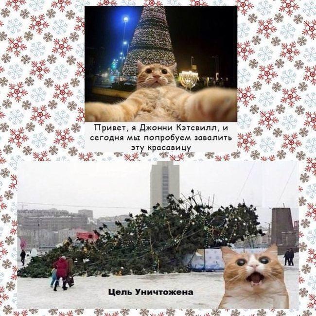 "фото 5: Котоматрица ""Кот и Новый год""!"