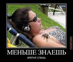 фото 5: Как мало тех, кто любит пауков и как же я их понимаю.