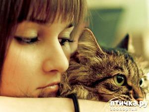 фото: Почему мой кот орёт?