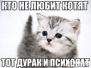 фото: Когда котенок подрастет!