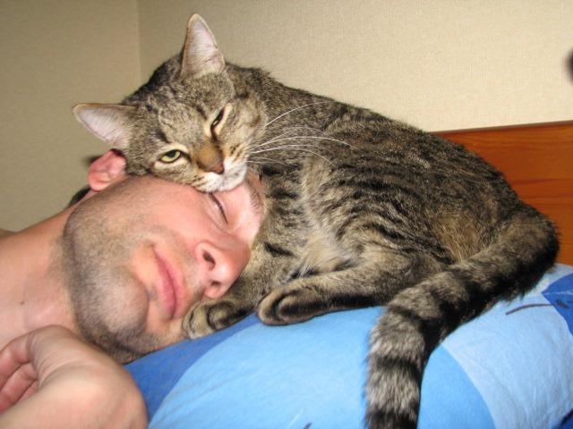 фото 10: Почему мой муж не кот?