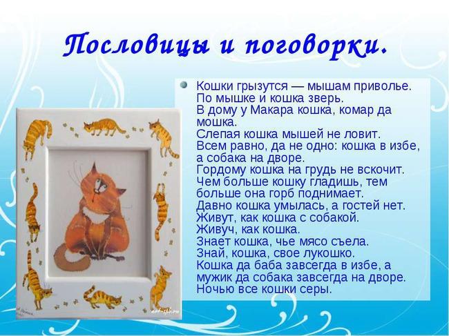 фото 3: А какие вы знаете высказывания о кошках?