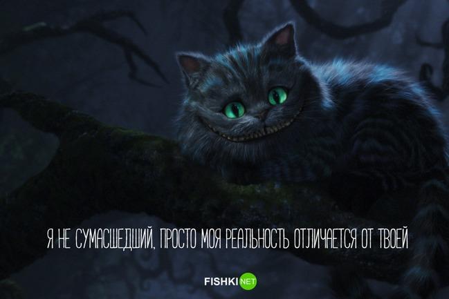 фото 8: А какие вы знаете высказывания о кошках?