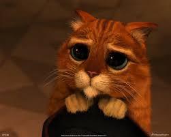 фото 9: Давайте вспомним котят из разных мультиков!!!