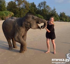 фото: Певица Варвара «усыновила малыша» в Тайланде