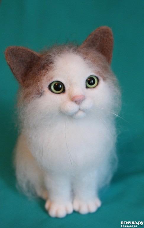 фото 3: Коты, собаки... всех люблю! и всех сделаю)))