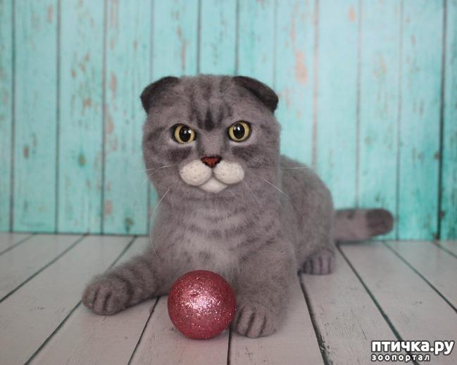 фото 5: Коты, собаки... всех люблю! и всех сделаю)))