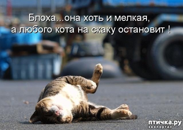 фото 17: