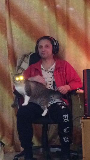 фото: Демонический кот.
