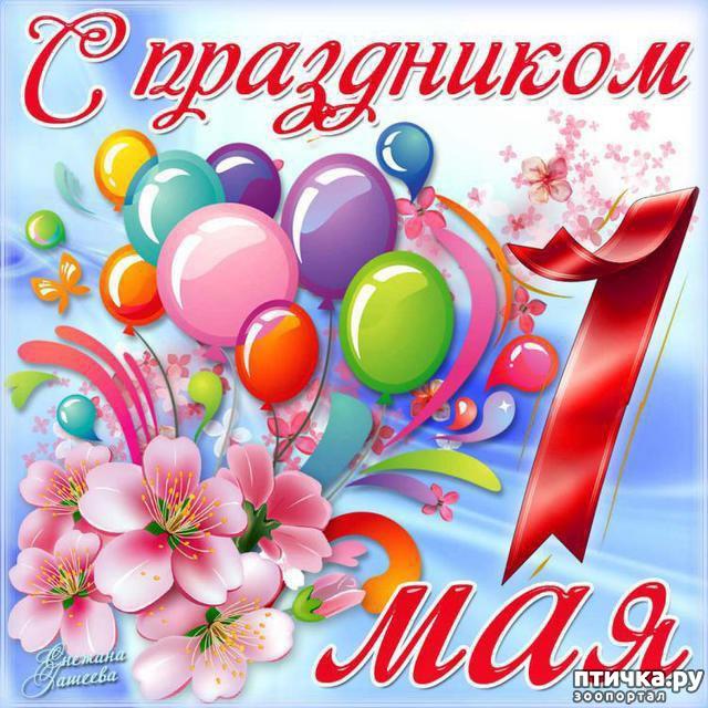 фото 1: Мир! Труд! Май! )))С 1 мая всех!