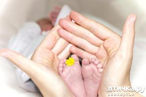 фото: MamasTV.com – полезные видео о развитии и воспитании детей