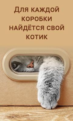 фото 1: Коробки и смысл жизни
