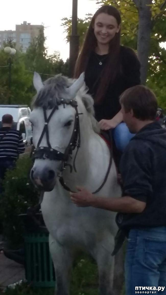 фото 2: Наше первое катание на лошади. Радости нет предела!)