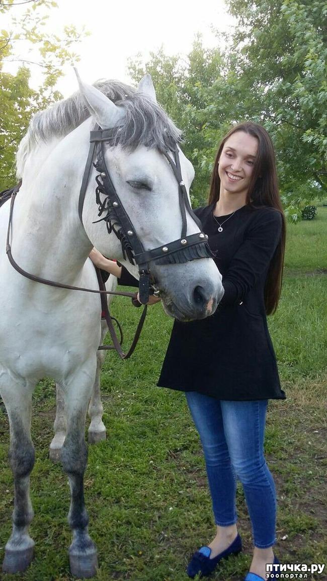 фото 1: Наше первое катание на лошади. Радости нет предела!)