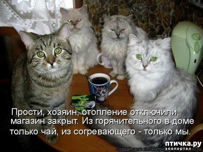 этой работе а ты пьешь чай картинки банке огурцами так