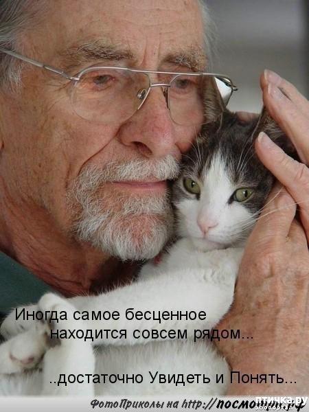 фото 1: Не обижайте кошек