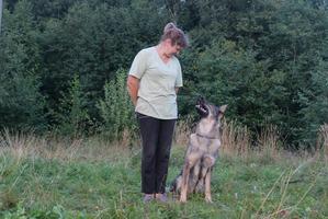 фото: Выработка контакта у взрослой собаки