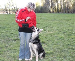 фото: Некоторые приемы для наработки контакта дрессировщика и собаки