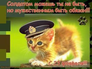 фото: Пятничная котоматрица: С Днем Защитника Отечества!