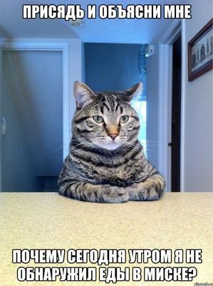 фото: Кто хозяин в доме?