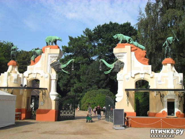 фото 24: Как я прошлась по зоопаркам