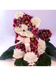 фото 20: Международный День Котиков!