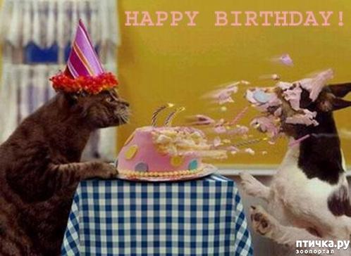 фото 11: Поздравляем Марину (Кarlita) с днем рождения!