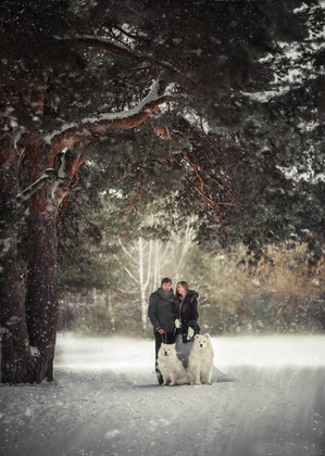 фото: Зимние прогулки в лесу.