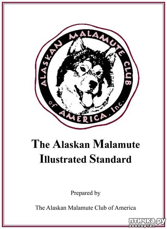 фото 1: Иллюстрированный стандарт породы Аляскинский Маламут