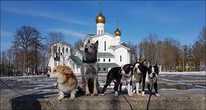 фото: Десант `БОН ФО ШОУ` в Новополоцке, Беларусь
