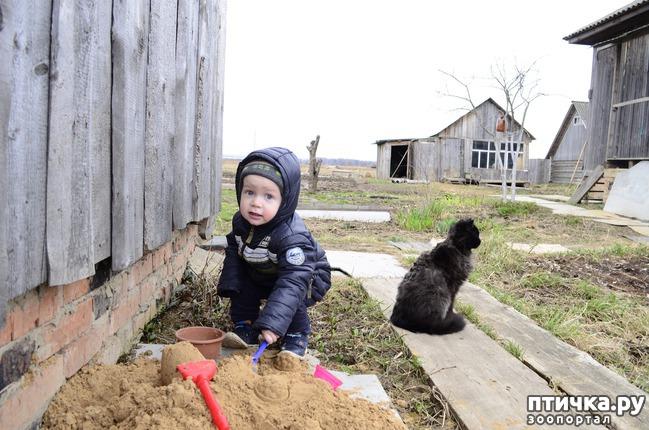 фото 3: Мечты сбываются. Переезд из Москвы в село.