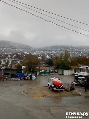фото: Первый снег. Феодосия